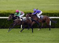 Enjoy Five Days Of Quality Flat Racing At Royal Ascot Starting Today
